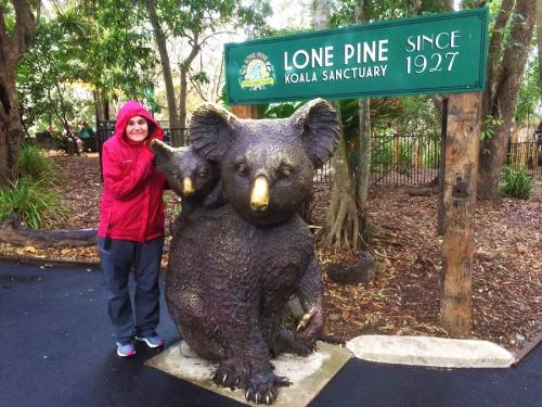 Entrada Lone Pine Koala